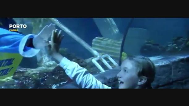 Pai Natal mergulha com os tubarões no Porto
