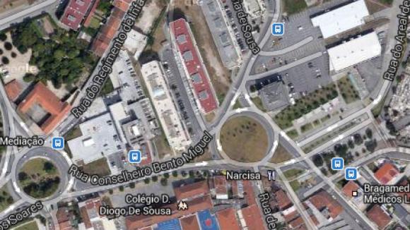 Dezenas de cravos plantados em protesto contra estátua do cónego Melo em Braga