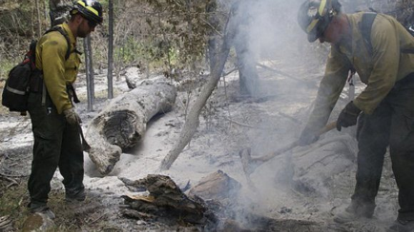 Fogo dominado na serra do Caramulo