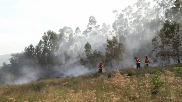 Incêndio florestal na Trofa chega a ameaçar casas