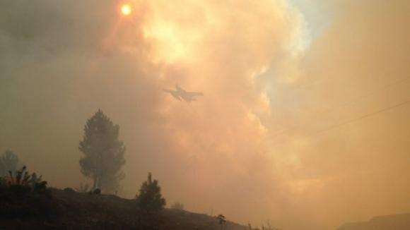 Dominado fogo florestal em Alijó