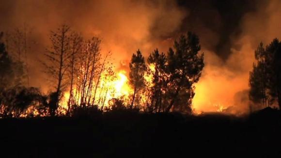 Onze distritos do país estão hoje em risco 'máximo' de incêndio