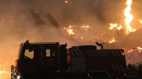 Presidente da Câmara de Pedrógão afirma que mais de 95% da floresta do concelho ardeu