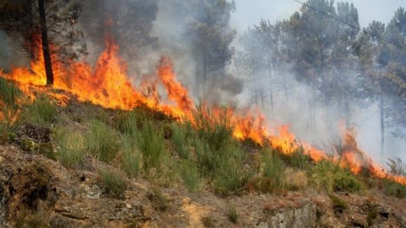 Fogo na Covilhã combatido por 350 bombeiros e 14 meios aéreos