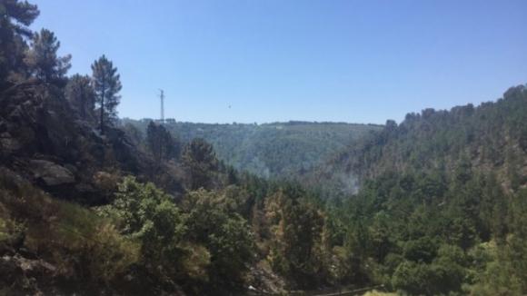 Dominado incêndio em Alijó, Vila Real