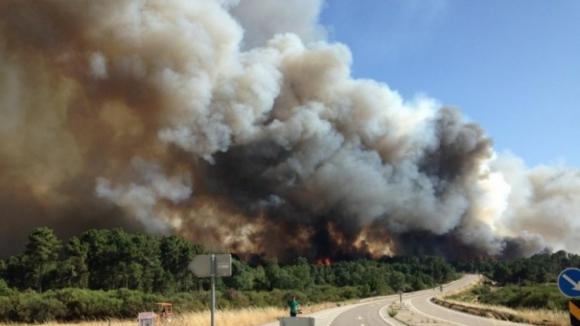 """Incêndio em Alijó está a """"queimar com bastante intensidade"""" e aproxima-se de adega"""
