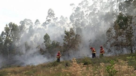 Incêndio na Trofa era o único ativo no país às 12h30