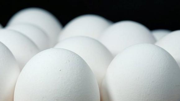 Cinco empresas francesas afetadas com ovos contaminados