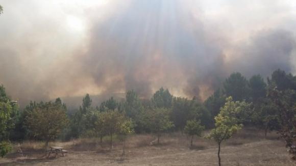 Incêndio em Paredes está a ameaçar casas e parar A41