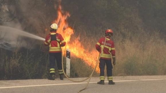 Cinco bombeiros sofreram queimaduras ligeiras em Abrantes