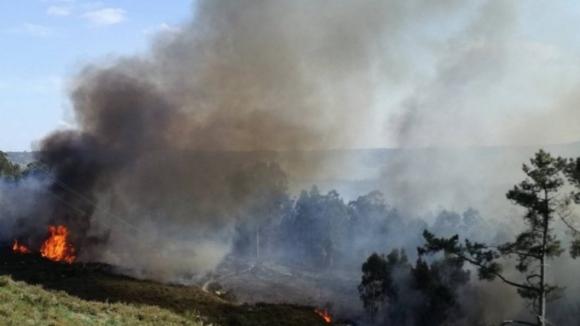 Sete meios aéreos combatem dois fogos no distrito de Viseu