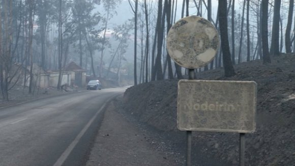 Pedrógão Grande: Sessenta e seis mortos, mais de 250 feridos e 500 casas destruídas