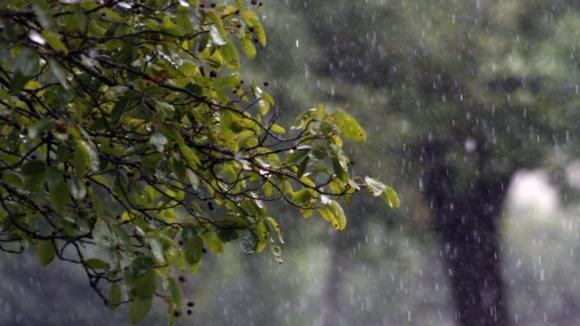 Chuva vai continuar até ao início da próxima semana