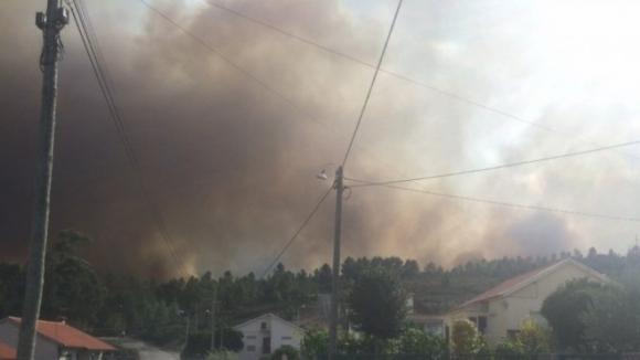 Governo propõe prémio para centrais de biomassa sem incêndios na região envolvente