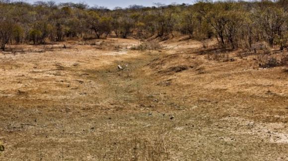 África do Sul declara estado de catástrofe natural em todo o país devido à seca
