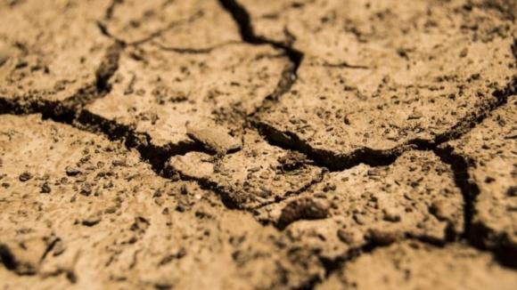 Produtores do nordeste algarvio estão endividados e reclamam medidas para enfrentar a seca