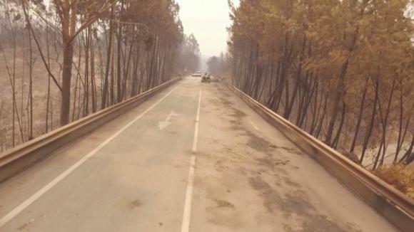 Risco de incêndio pode vir a ser maior na zona afetada de Pedrógão Grande