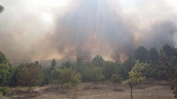 Mais de 30 concelhos estão este sábado em risco máximo de incêndio