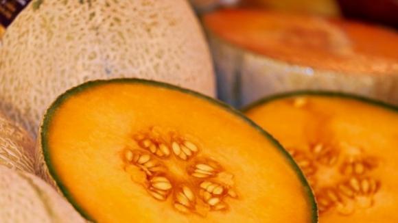 Produção de melão de casca de carvalho dizimada devido ao calor em Barcelos