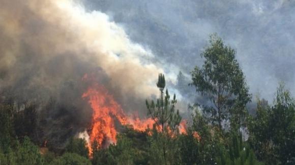 Uma centena de operacionais combatem fogo florestal em Guimarães 970ff1b087138