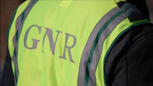 PSP e GNR multaram mais de cem condutores por dia por uso do telemóvel em 2018