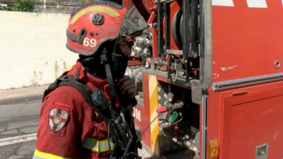 Fogo em Oliveira de Azeméis mobiliza centenas de operacionais e obriga ao corte de várias vias