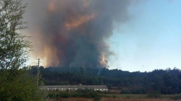 Mais de 4.200 fogos e 7.800 hectares de área ardida desde o início do ano